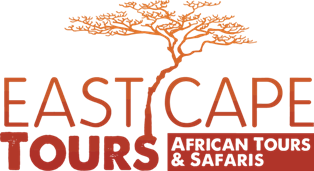 "[""East Cape Tours""]"